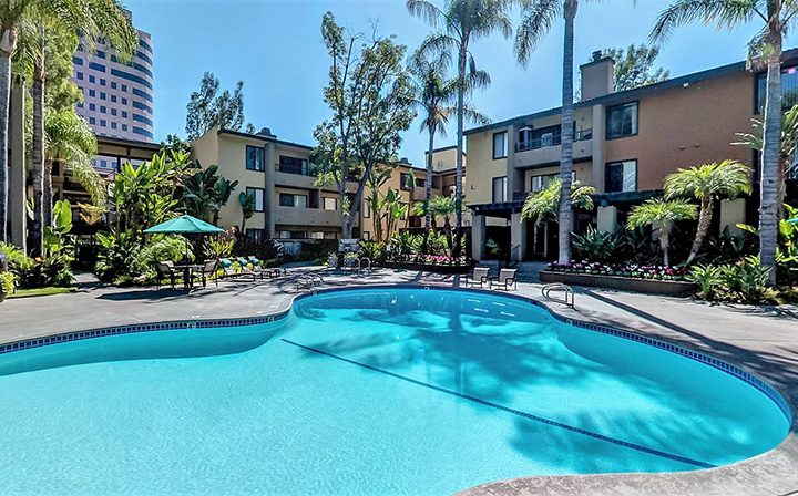 Large curved resort-style pool with palm trees at Woodland Hills apartments community Alura