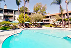 Decron Alura Pool