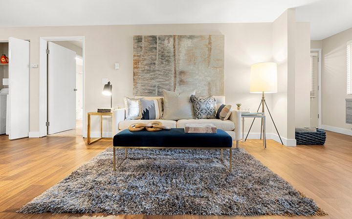 Ornate living room with modern art and blue-accent rug at Kent apartments community Indigo Springs