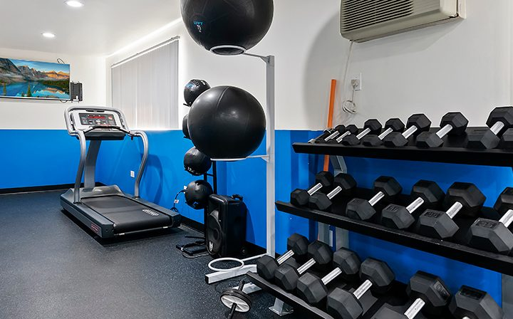 Free weights in fitness center against blue accent wall at Kaitlin Court, apartments in Los Angeles