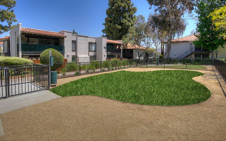 Enclosed dog park area with grass and dirt at Los Robles, apartments in Thousand Oaks