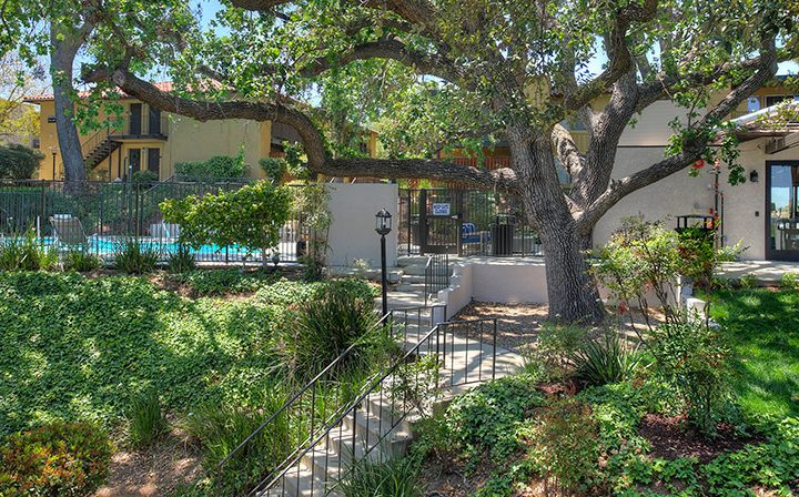 Lush growth around stairs to pool at the Thousand Oaks apartments community Los Robles