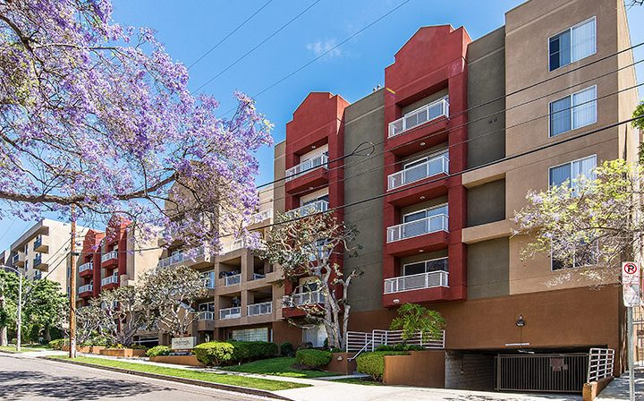 Streetside view of Marlon Manor next to blossoming tree, Los Angeles apartments in Hollywood