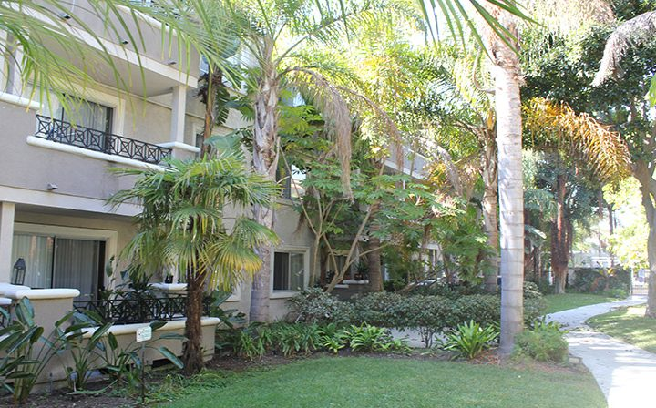 Wooded, grassy area outside units at Playa Pacifica, Los Angeles apartments in Playa del Rey