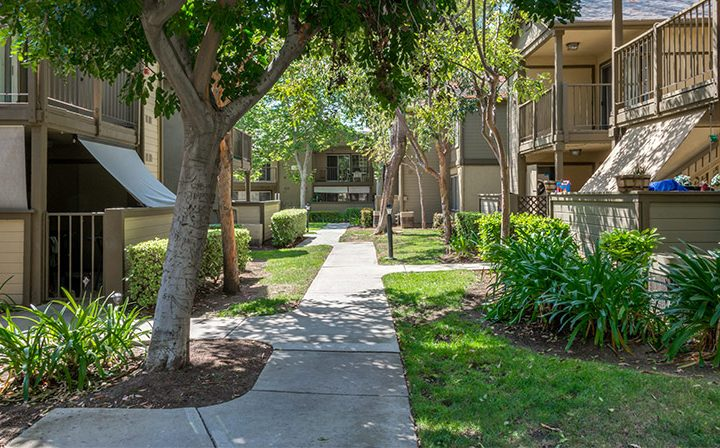 Shaded path through the Reserve at Chino Hills apartments with trees, grass, and shrubbery
