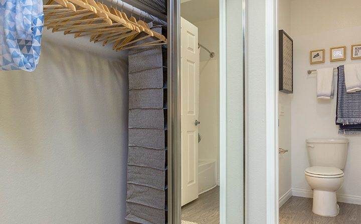 Open closet with mirrored sliding glass doors next to bathroom at Adagio at South Coast apartments