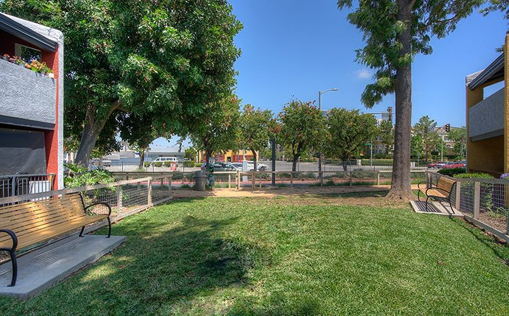 Outdoor park area at the Reserve at South Coast apartments in Orange County