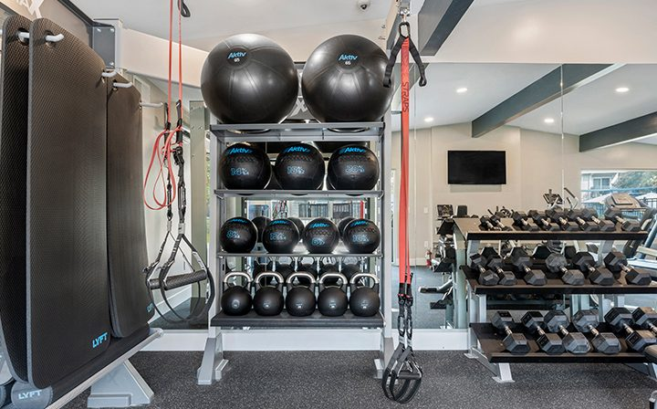 Free weights and exercise balls at the Reserve at Walnut Creek apartments gym
