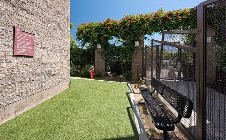Fenced, grassy dog park area at Bridgecourt, Emeryville apartments for rent