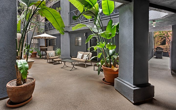 Courtyard with tall plants and dark grey walls at The Jeremy, apartments in West Los Angeles