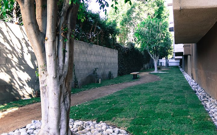 Grassy outdoor path suitable for dog walking at the Hollywood apartments community The Joshua