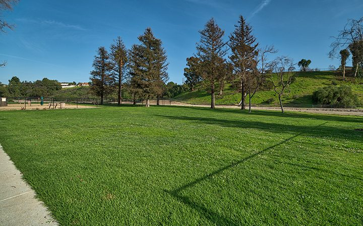 Large, grassy, open field on the grounds at The Ranch at Moorpark, Moorpark apartments