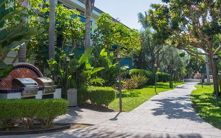 Path through grassy courtyard by BBQ grills at Westside Terrace, apartments in West Los Angeles