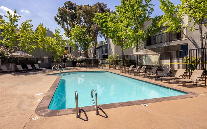 Large pool on sunny day with seating near tall trees at Willow Creek, apartments in San Jose