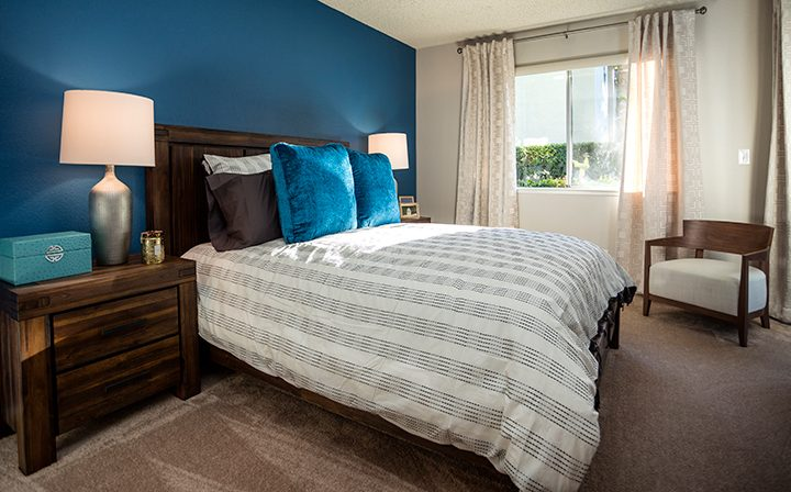 Furnished bedroom with blue accent wall and brown carpet at Willow Creek, apartments in San Jose