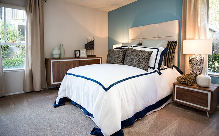 Carpeted, furnished bedroom with blue accent wall at Willow Creek, San Jose apartments