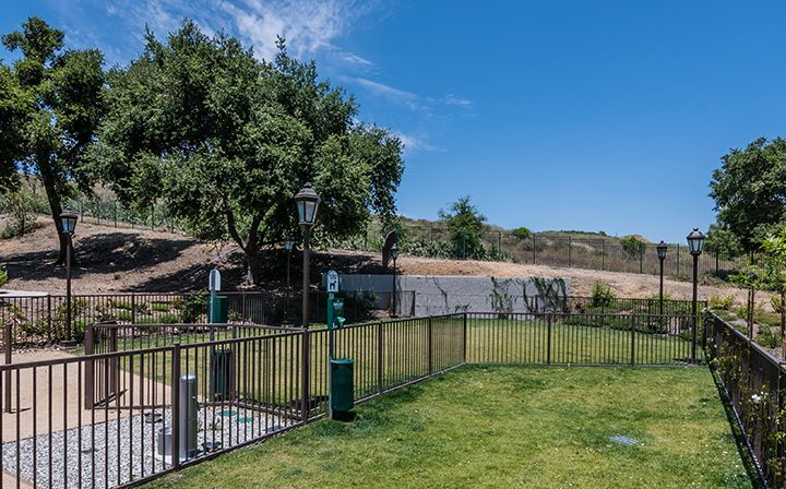 Contained dog park with grassy area near trees at Wood Ranch, apartments in Simi Valley