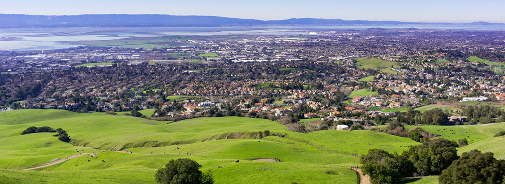View of Fremont from grassy hills on clear day, looking out at Bay Area apartments and cities