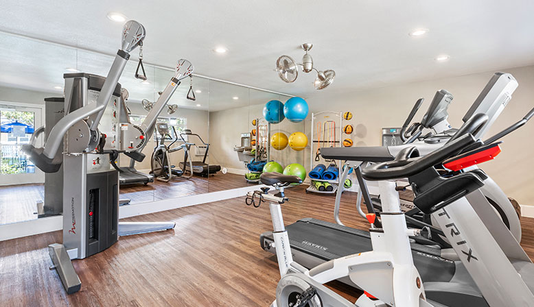 Fitness center with colorful exercise balls at Rancho Luna Sol, Fremont apartments in the Bay Area